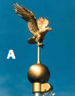 flagpole eagle