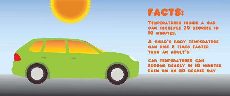 heatstroke and cars